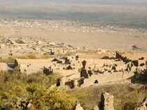 afgan2301