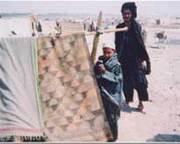 afgan5