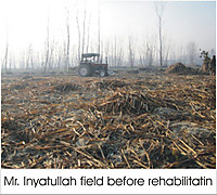110428_mrinyatullah_field_before__2