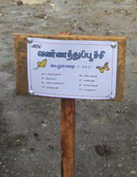 1012163_koolavady_mofa02_name_board