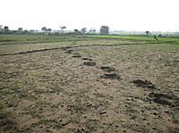 140130_footprint_3