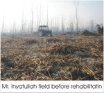 Mrinyatullah_field_before_rehabil_2