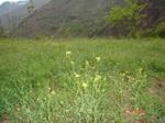 Unicef_jpf3_jpf4_200744_spring_view_2