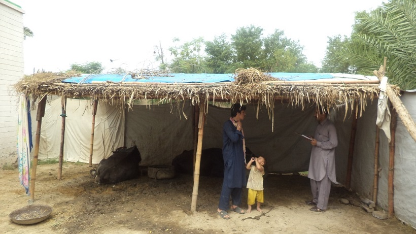 20150827_pk_01_shelter1