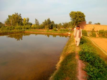 20160519_pk_04_irrigationjpg