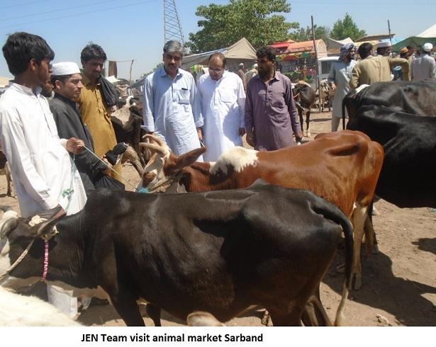 20160609_pk_01_cattlemarketjpg