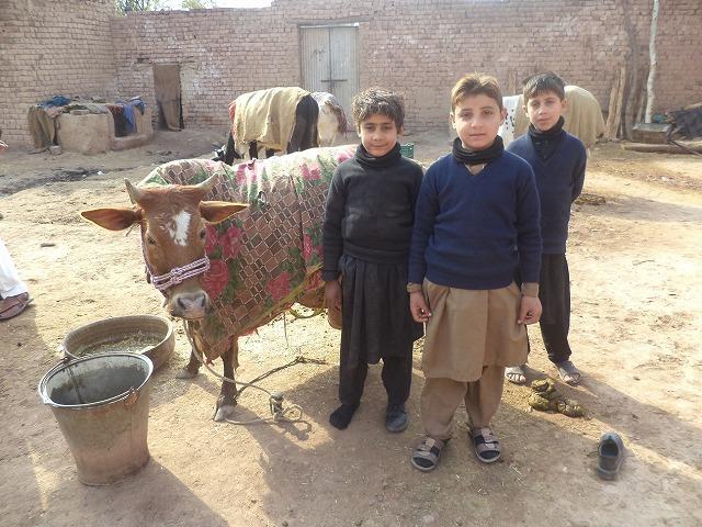 20171005_pk_boys1